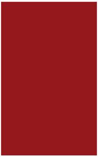 point-icon